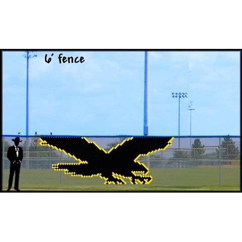 6' x 17' Flying Eagle/Hawk