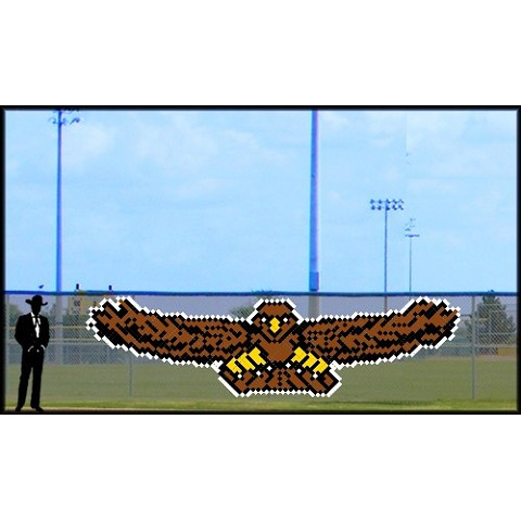 6' x 20' Front Flying Eagle/Hawk