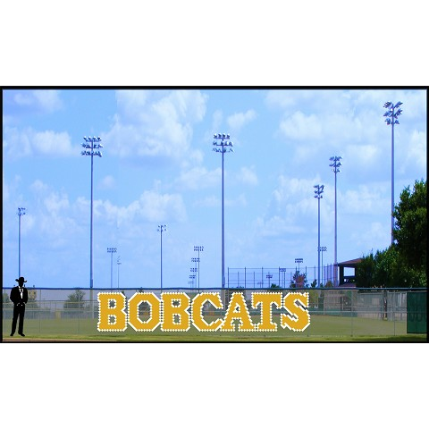 4.5' Bobcats Letters