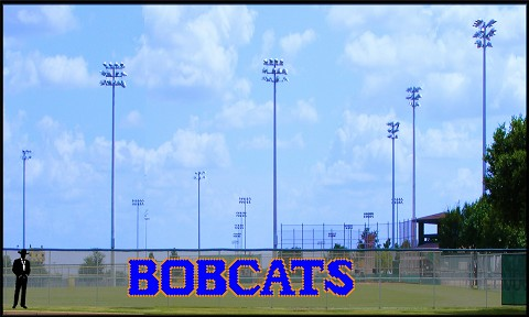 4' Bobcats Letters