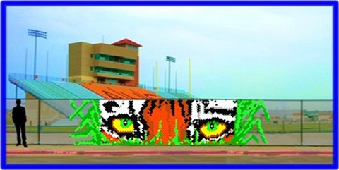 6' x 25' Tiger Eyes with Grass