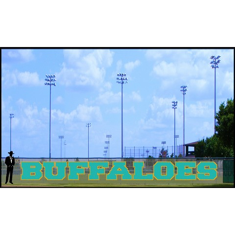 4.5' Bold Buffaloes  -  2 Colors