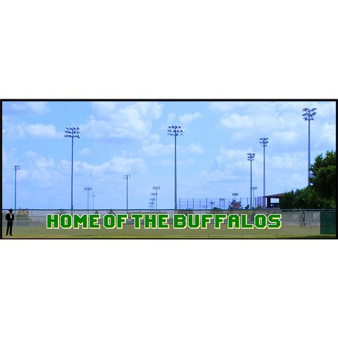 Home of the Buffaloes